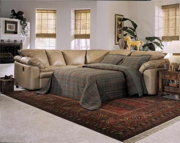 Sleeper Sofa With Chaise Bed Magnificent Sectional Sleeper Sofas Photo 88
