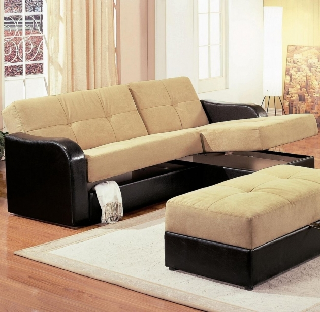 Sleeper Sofa With Chaise Lounge Sectional Pic 75