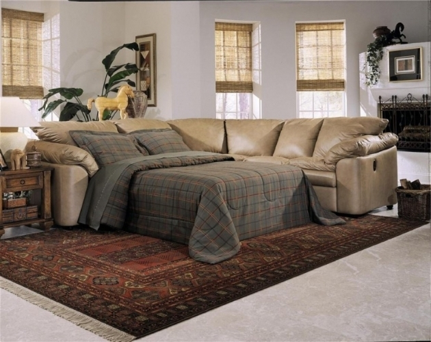 Unique Roller Window BlindLeather Sectional Sleeper Sofa With Chaise Area Rug Ideas Photos jolenesart96