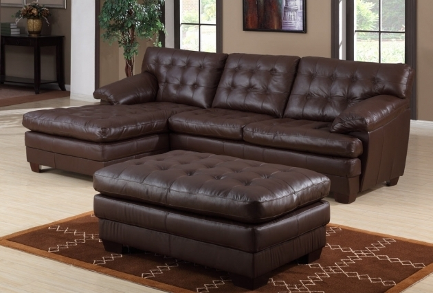 Borown Sectional Chaise Lounge Sofa With Ottoman For Living Room Picture 72