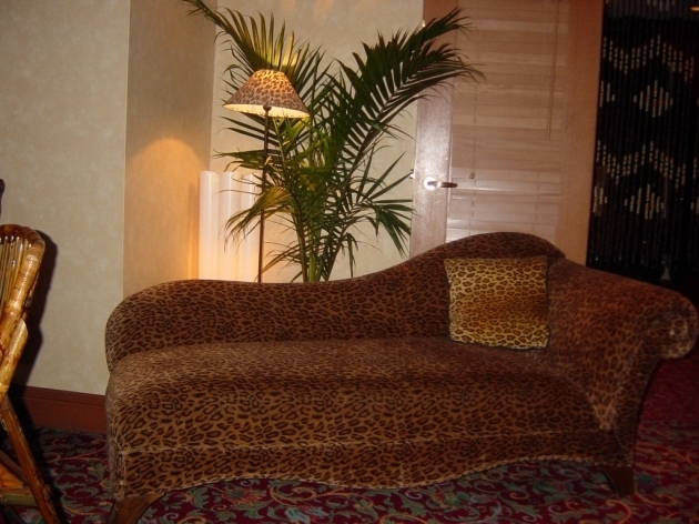 Leopard Chaise Lounge Print Skin Furniture Collections Pictures 95