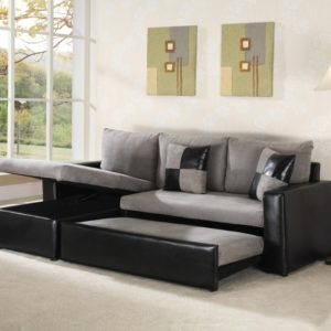 Sleeper Sofa with Chaise Lounge